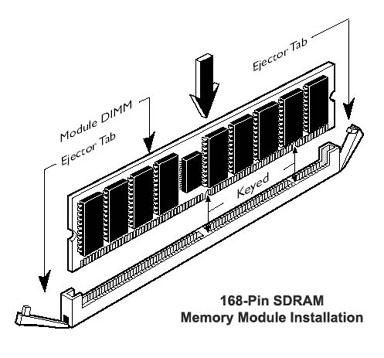 Random Access Memory 1201.jpg