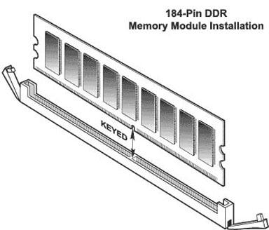 Random Access Memory 1203.jpg