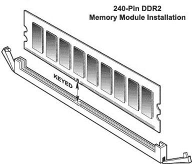 Random Access Memory 1205.jpg