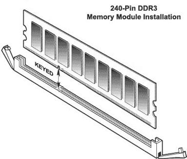 Random Access Memory 1207.jpg