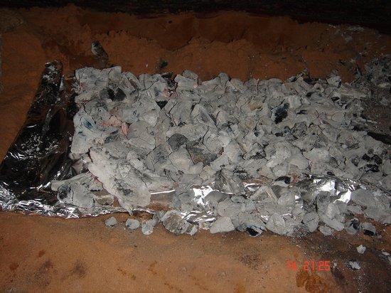 مدفونة القصدير الطريقة البرية 113.jpg
