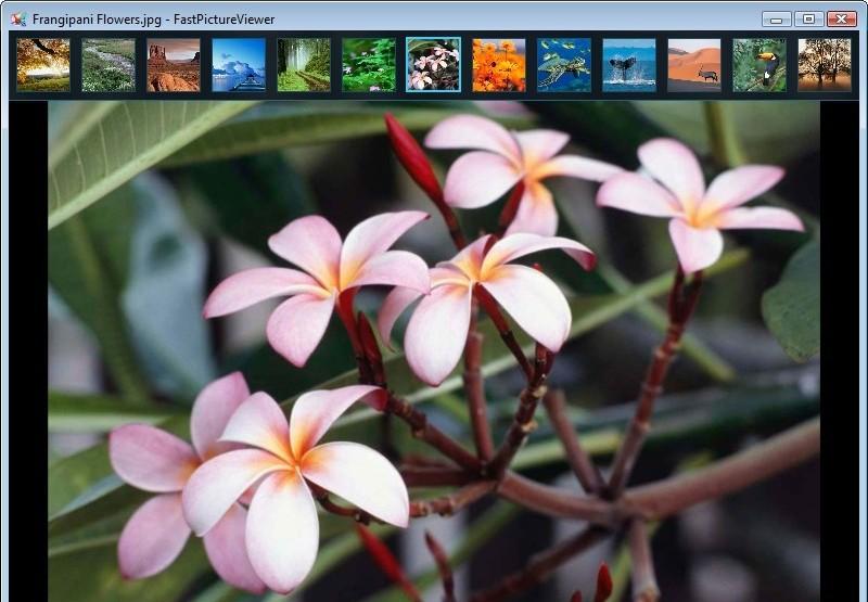 FastPictureViewer 34.jpg