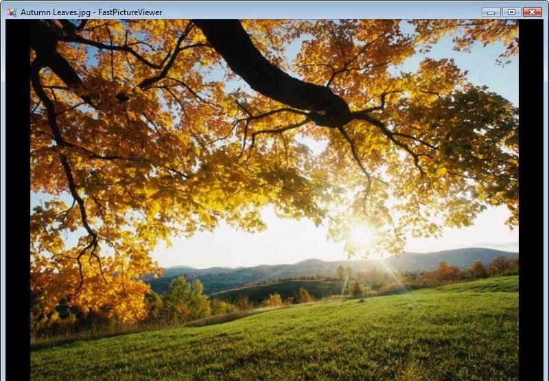 FastPictureViewer 35.jpg
