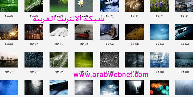 wallpapers 6875.imgcache.jpg