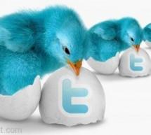 """المدير التنفيذي لـ""""آبل"""" تيم كوك ينضم إلى """"تويتر"""""""
